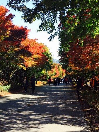 Cheonan, South Korea: photo1.jpg