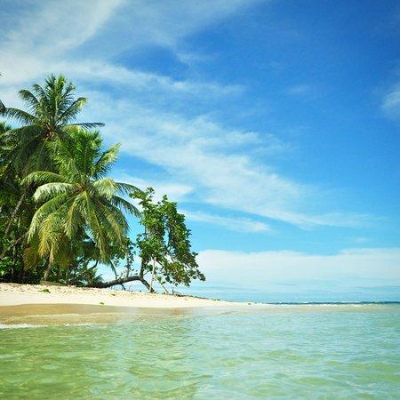 Isla Bastimentos, Panama: Bastimentos Alive Tours