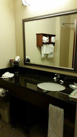 Comfort Inn & Suites Fort Myers: Banheiro