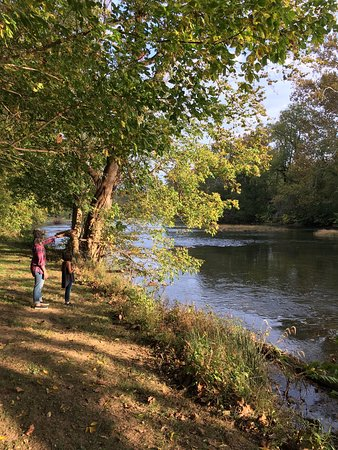 Shenandoah River Outfitters and River Cabins: photo0.jpg