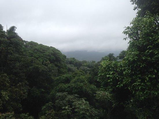 Gulf of Papagayo, Costa Rica: Hanging bridge view