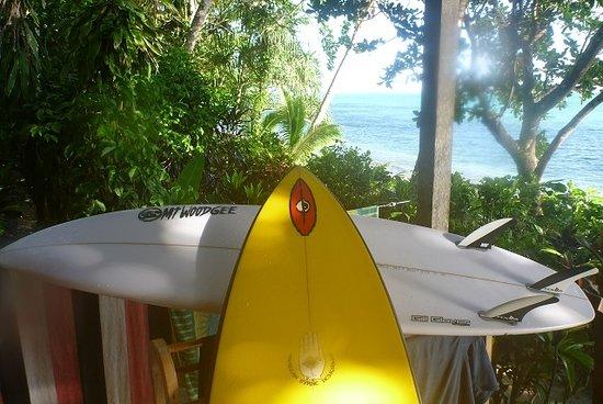 Matanivusi Surf Resort Photo