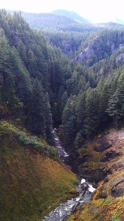 Oakridge, OR: Salt Creek Falls