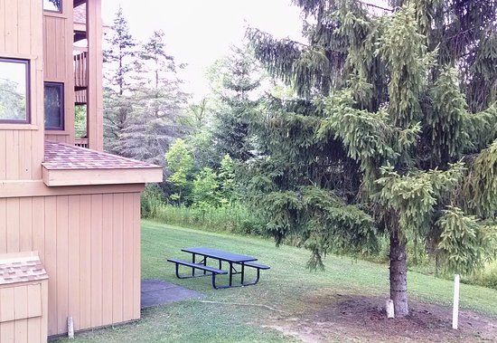 Ellicottville, NY: Family picnic areas.