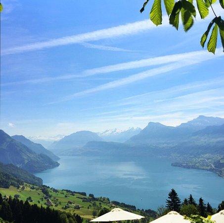 Hotel Villa Honegg: photo1.jpg