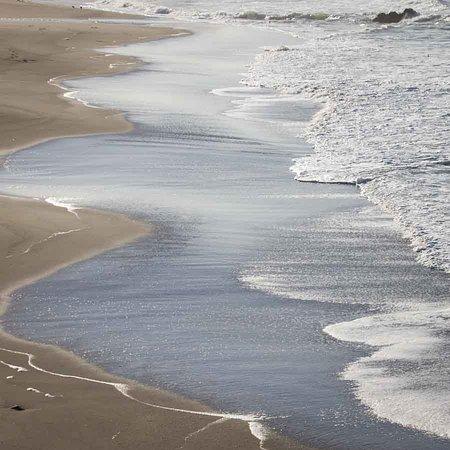Gualala, كاليفورنيا: sea ranch beach