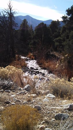 Baker, NV: Great Basin National Park