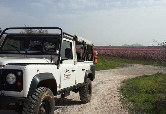 ميروم جولان: No Other Land-Jeep Tours