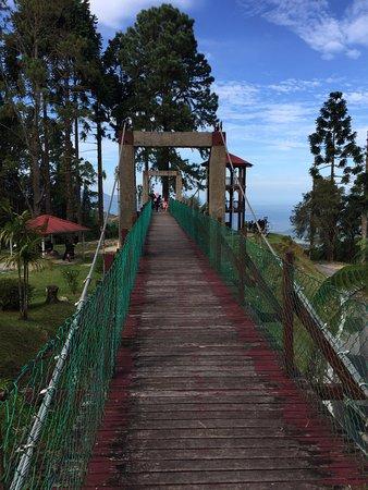 Taiping, Malaysia: A Small Link Bridge