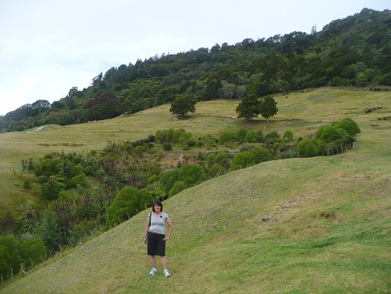 at the peak of the mount maunganui