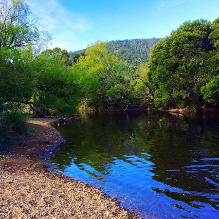 Gunns Plains, Australia: River at the camping flats