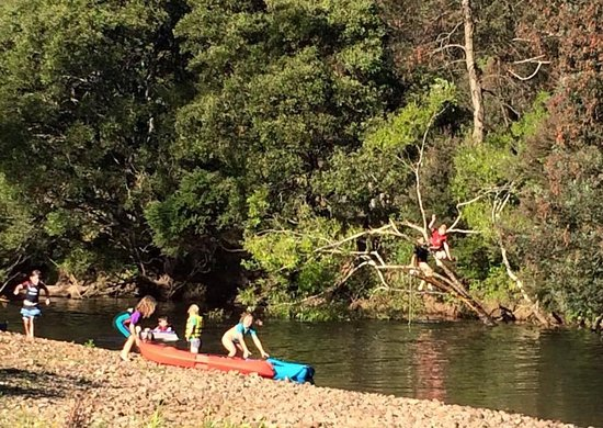 Gunns Plains, Australia: Camping fun down on the river at Wings Wildlife Park