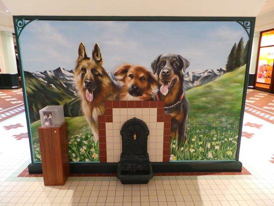 Hundetränke - Bild von Designer Outlet Salzburg, Salzburg - TripAdvisor