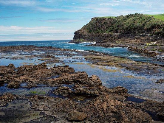 Waikawa, Νέα Ζηλανδία: Curio Bay