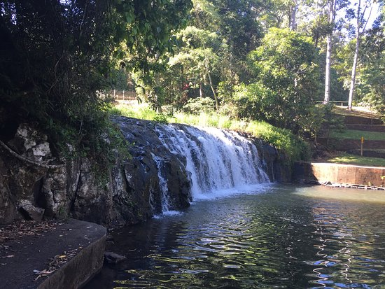 Malanda Falls Caravan Park: photo0.jpg