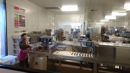 Yarra Glen, Australia: this is how they show u abt production of chocolate