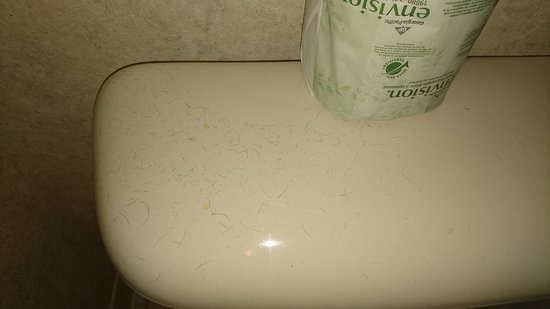 Canton, MI: We had in the bathroom a lot of hairs everywhere.  And the sink in the bathroom didn't work to.