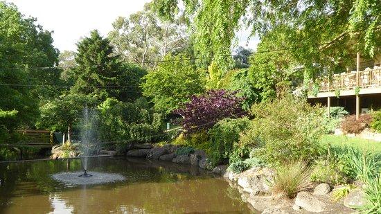 Warrandyte, Australia: Cafe overlooking the stream