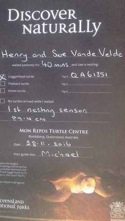 Bundaberg, Australia: They have certificates with the tag # they assigned to the turtle to allow us to keep track.