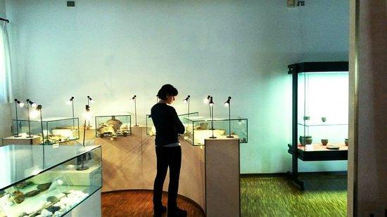 Museo Archeologico Dell'alto Vicentino