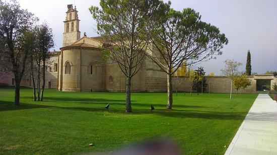Sardon de Duero, Spania: DSC_0034_large.jpg