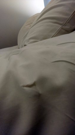 Borehamwood, UK: Ripped bedsheet in the room