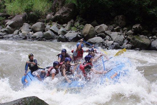 Tortuguero, Kosta Rika: Uno de los rápidos que pasamos, y así durante 30 km...