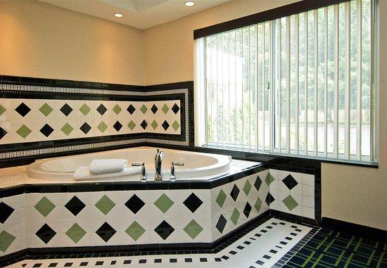 Windsor Locks, CT: King Spa Guest Room