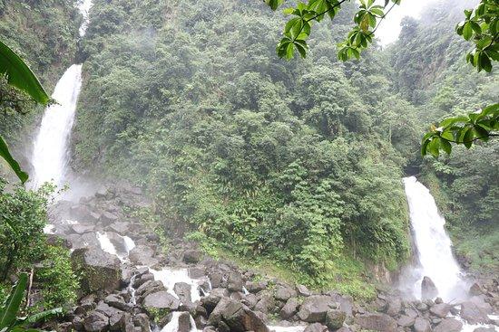 Roseau, Dominica: The Falls