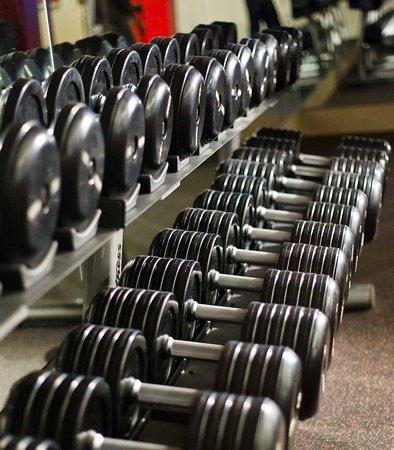 Greenbelt, Μέριλαντ: Fitness Center – Free Weights