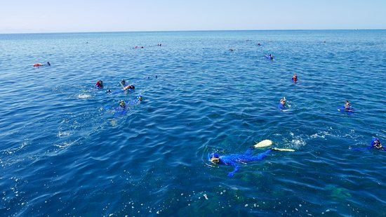 Reef Experience: View from the Sun Deck at all the snorkelers.