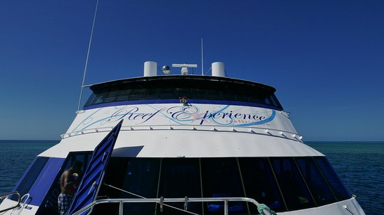 Reef Experience: View from the front deck while anchored at sea.