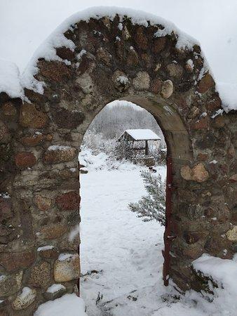 Slantsy, Ρωσία: Эти фотографии сделаны в Старопольском поселении , сланцевского района . Храм Рождества Христова