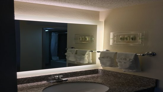 Holiday Inn Atlanta - Northlake: Guest Bathroom