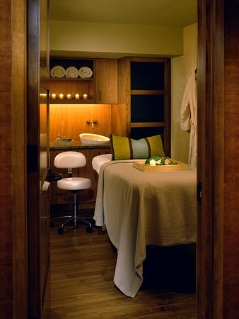 Leesburg, VA: Lansdowne_Spa_Treatment_Room