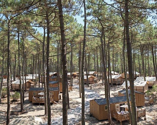 Carcans, France: Camping La Dune Bleue***