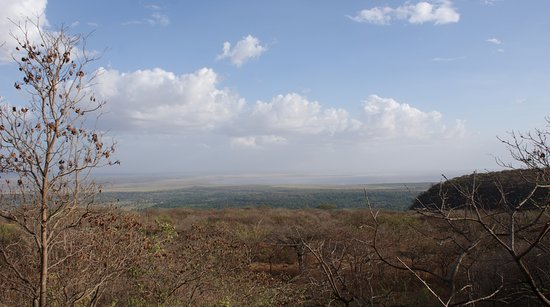 Lake Manyara National Park Picture