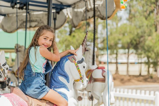 Lovedale, Australia: Children's Carousel
