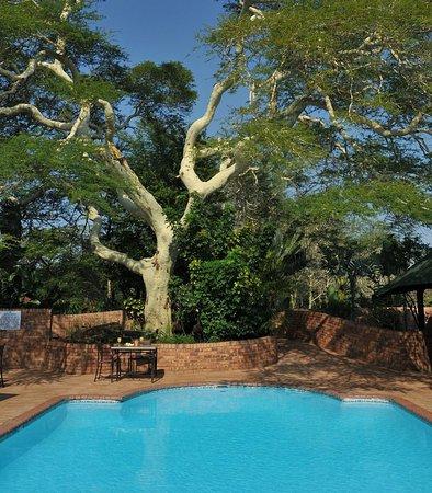 Hluhluwe, Νότια Αφρική: Outdoor Pool