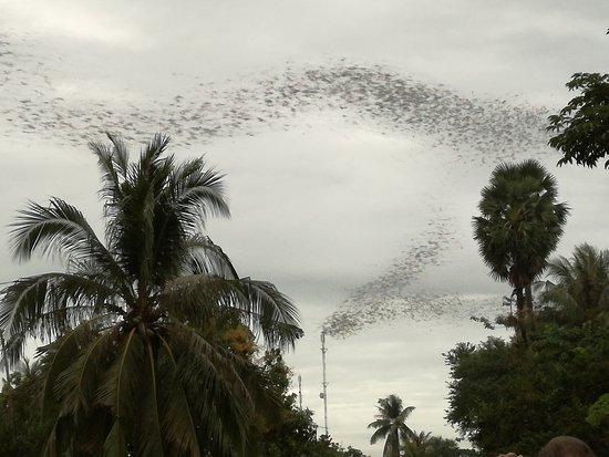 Battambang countryside ...!