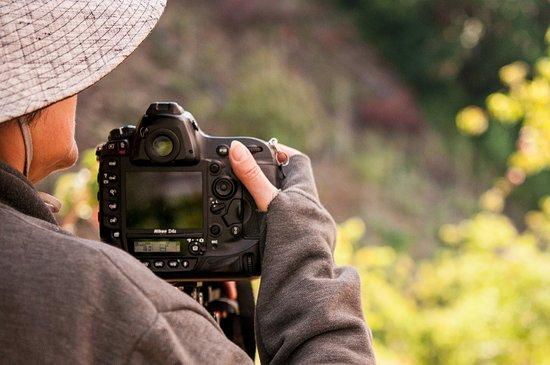 San Gerardo de Dota, Kostaryka: Photography Garden