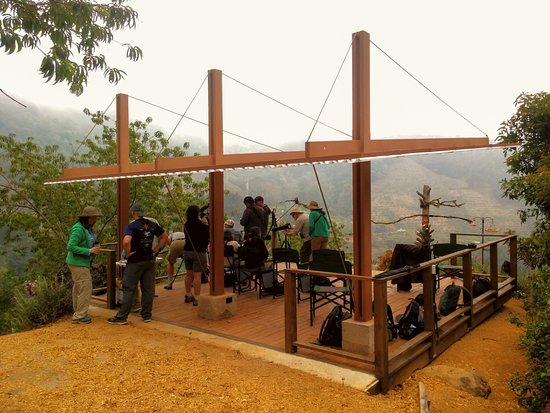 San Gerardo de Dota, Kostaryka: Birding platform