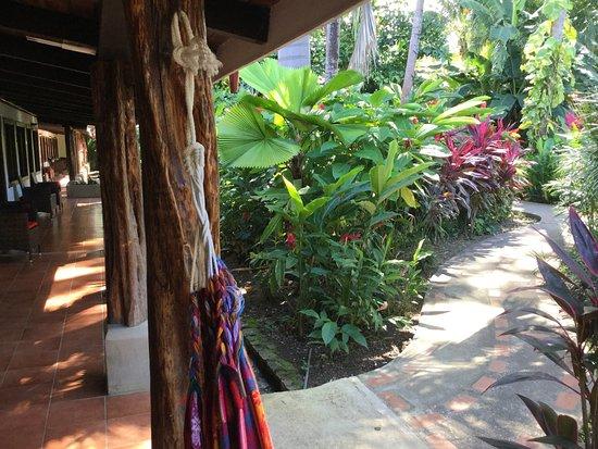 Плайя-Потреро, Коста-Рика: photo1.jpg