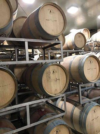 Lujan de Cuyo, Argentina: The barrels
