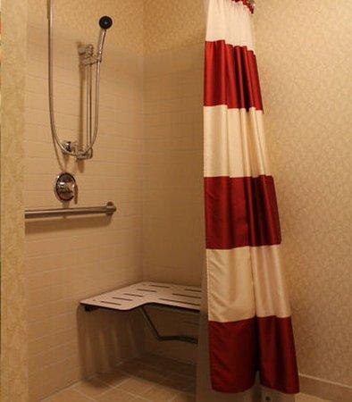 Waynesboro, فيرجينيا: Accessible Guest Bathroom