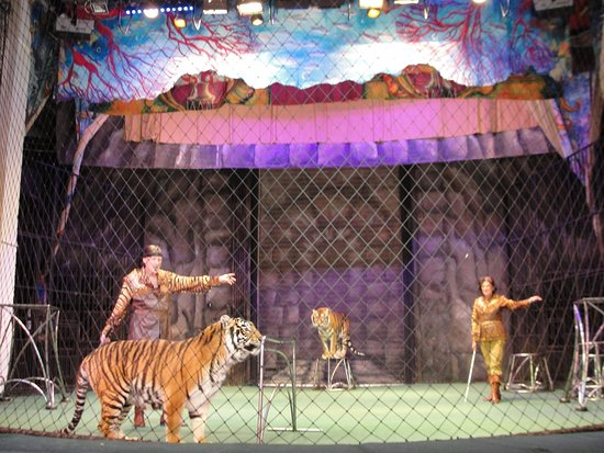 Durov Animal Theatre