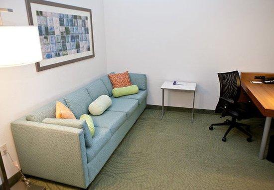 Lynchburg, Wirginia: Suite Living Area