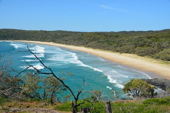 Noosa, Australië: beach