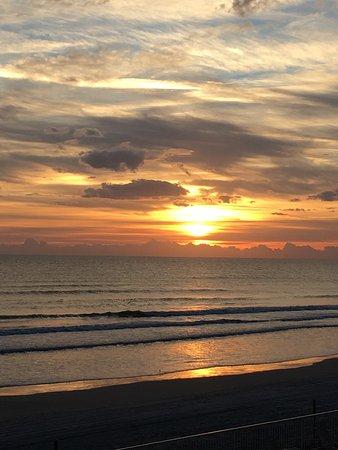 Ormond Beach, FL: photo2.jpg