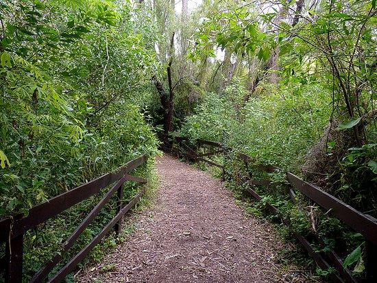 Reserva Ecológica Vicente Lopez